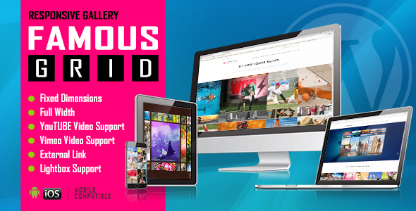 Famous Responsive Image And Video Grid