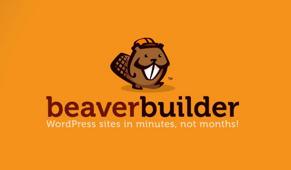 Beaver Builder Pro WordPress Page Builder Plugin