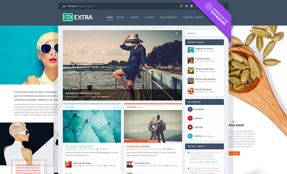Extra 2.19 - Drag & Drop Magazine WordPress Theme
