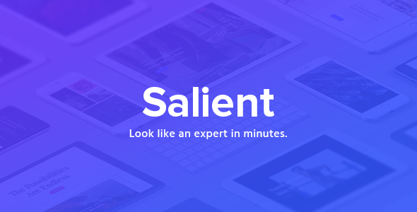 Salient 10.5.2 - Responsive Multi-Purpose WordPress Theme