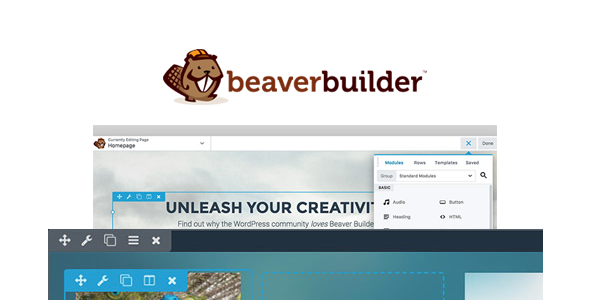 Beaver Builder Pro 2.3.2.5 - WordPress Page Builder Plugin