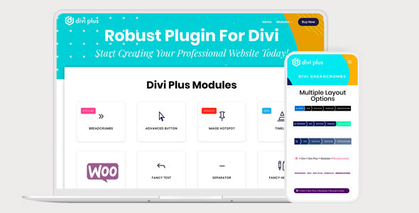 Divi Plus 1.6.4 - New Modules and Extensions to Divi Theme